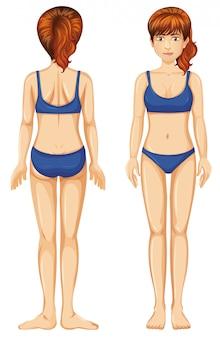 Mujer en bikini azul vista frontal y posterior