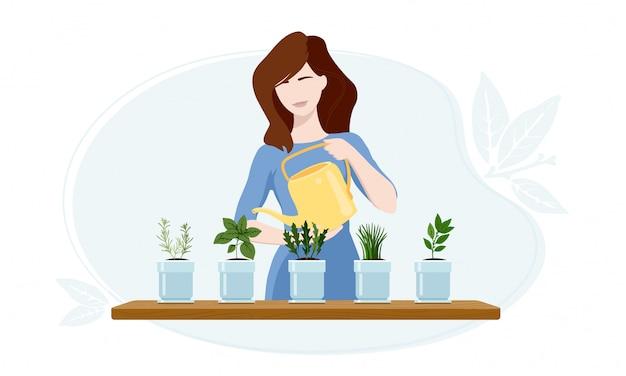 Mujer regando plantas de rúcula, laurel, cebollino, orégano y romero en su invernadero.