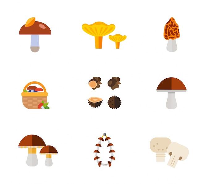 Mushrooms conjunto de iconos