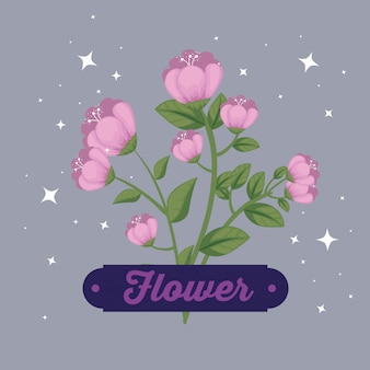 Naturaleza flores plantas con pétalos y emblema