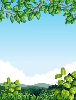 Naturaleza con hojas de arbol.