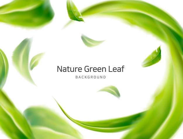 Naturaleza, hojas de primavera de aire limpio