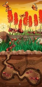 Naturaleza con mariposas y hormigas en jardín