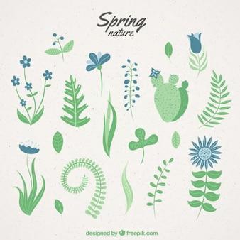 Naturaleza primaveral dibujada a mano