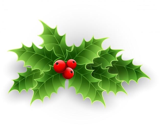 Navidad holly berry.