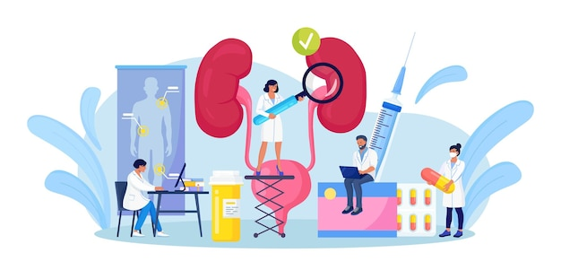 Nefrología, urología. pequeños médicos que realizan investigaciones médicas, exámenes, controles de salud. infección del tracto urinario, insuficiencia renal, cistitis, pielonefritis. tratamiento de enfermedades renales y de la vejiga