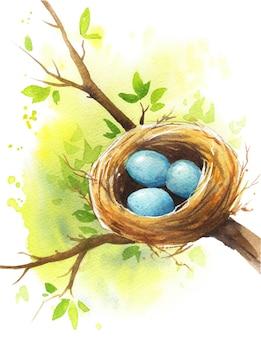Nido de pájaro con huevos azules en la rama de un árbol a principios de la primavera, ilustración acuarela