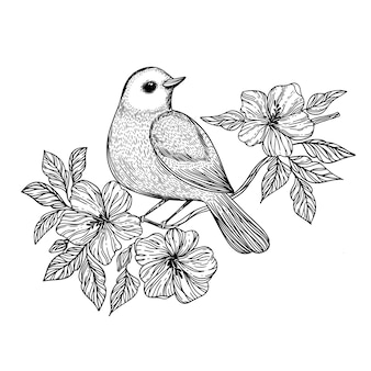 Nightingale songbird se sienta en una rama con flores en flor monocromo boceto dibujado a mano