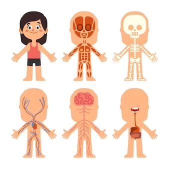 Niña de dibujos animados cuerpo anatomia