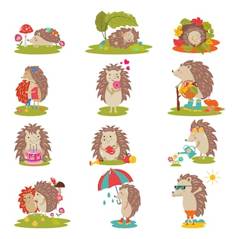Niño animal espinoso del carácter de la historieta del vector del erizo con el corazón del amor en sistema del ejemplo de la fauna de la naturaleza de erizo-tenrec que duerme o que juega en el bosque aislado.