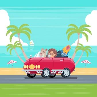 Niño y perro conduciendo un coche descapotable con tabla de surf y equipaje en una carretera que bordea la playa