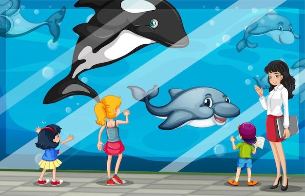 Niños mirando a los delfines en el acuario.