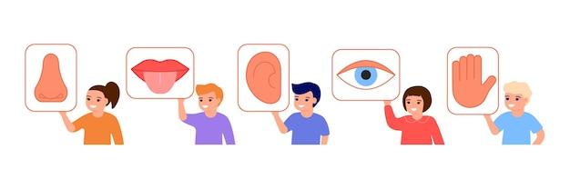 Los niños sostienen la imagen con los cinco órganos de los sentidos. los niños muestran la parte sensorial del cuerpo: ojo, boca, oído, nariz, mano. vista, gusto, oído, olfato y tacto. ilustración