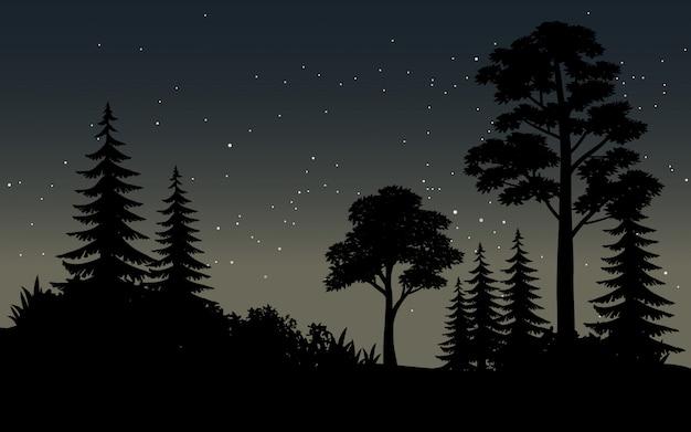 Noche estrellada en paisaje de vector de bosque