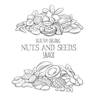 Nueces y semillas dibujadas a mano