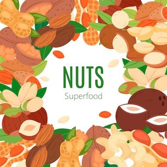 Nueces superfood colección banner plano de dibujos animados. cacahuete, anacardo pistacho, coco, avellana y macadamia.