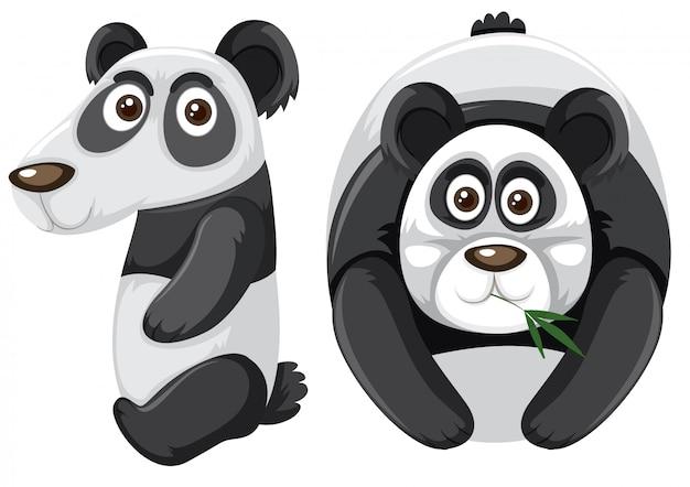 Número diez con carácter panda.