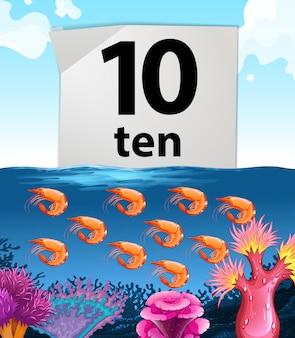 Número diez y diez camarones bajo el agua