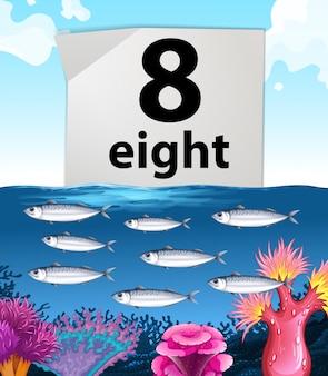 Número ocho y ocho peces nadando bajo el agua