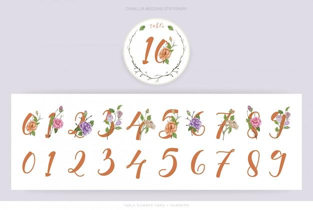 Números de acuarela de flor de camelia