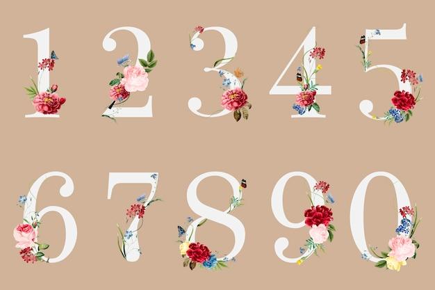 Números botánicos con ilustración de flores tropicales