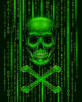 Números de código binario del cráneo de jolly roger, computadora pirata pirata informático en línea