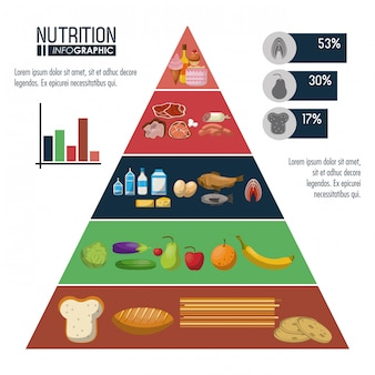 Nutrición y pirámide de alimentos infografía
