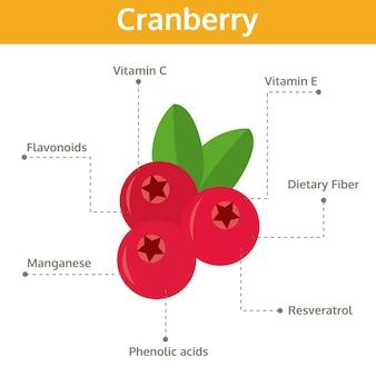 Nutriente de arándano de hechos y beneficios para la salud