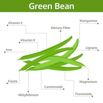 Nutriente de frijol verde de hechos y beneficios para la salud.