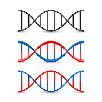 Objeto de arte de conjunto de símbolos de adn. ilustración vectorial