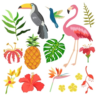 Objeto de verano tropical estilo plano