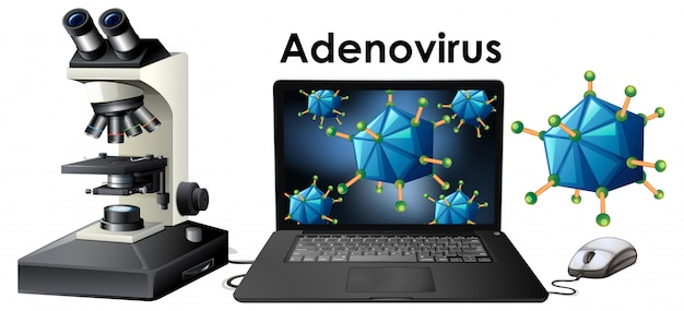 Objetos de virus llamados adenovirus