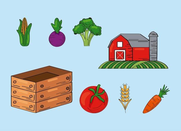 Ocho productos frescos de granja.