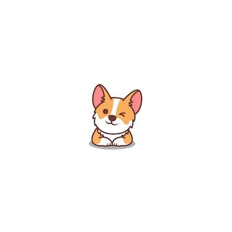 Ojo de guiño lindo perro corgi