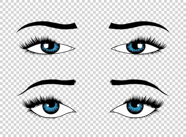 Ojos vectoriales. ojo de lujo femenino dibujado a mano con cejas perfectamente formadas y pestañas llenas. el look perfecto