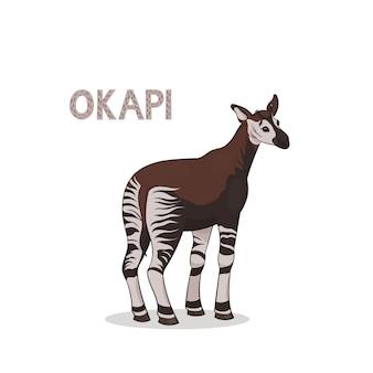 Un okapi de dibujos animados, aislado.
