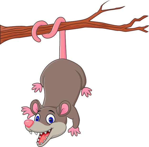 Oposum gracioso de dibujos animados en una rama de árbol