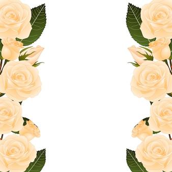 Orange rose border