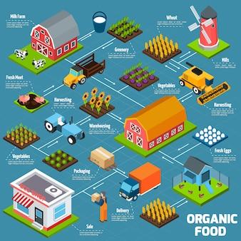 Organigrama isométrico de alimentos orgánicos
