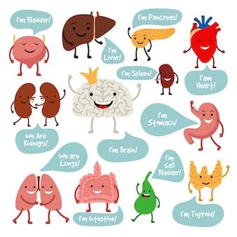 Órganos de anatomía de dibujos animados con sonrisas