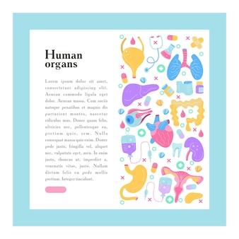 Órganos humanos. un conjunto de elementos vectoriales.