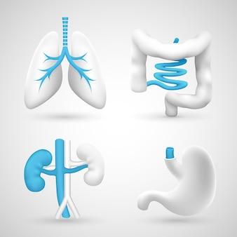 Órganos humanos sobre un fondo blanco objetos grises. ilustración vectorial