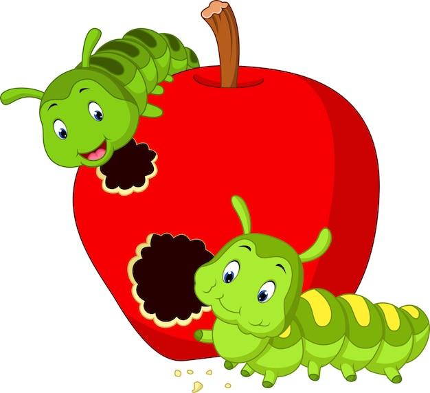 Las orugas comen la manzana