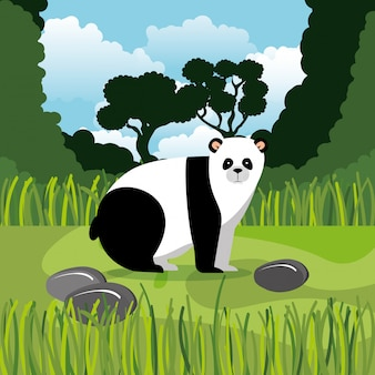 Oso panda salvaje en la escena de la selva