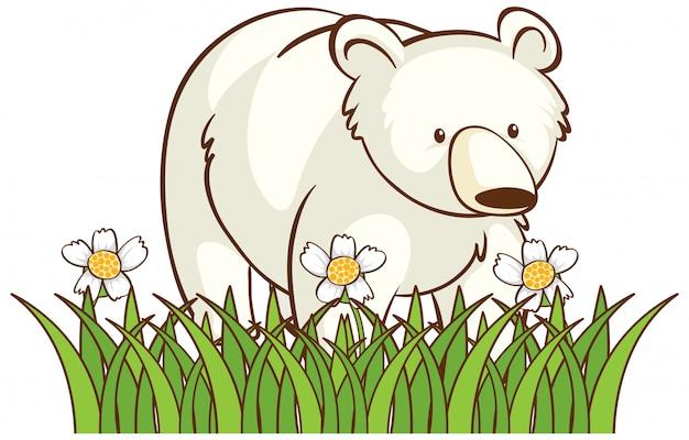 Oso polar aislado en jardín
