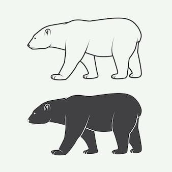 Oso polar blanco ártico