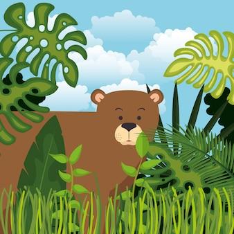 Oso salvaje grizzly en la escena de la selva