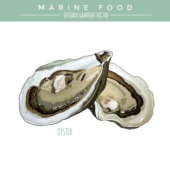 Ostra. comida marina