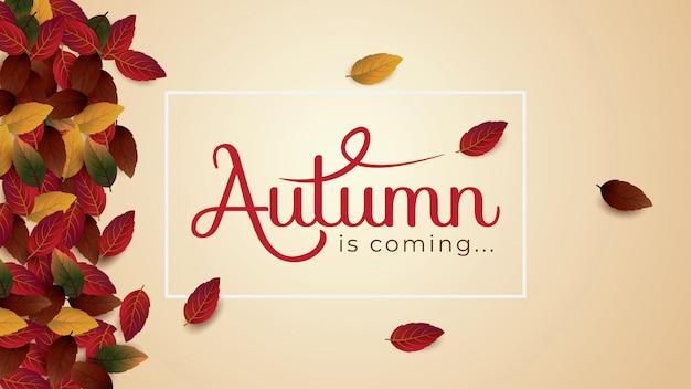 El otoño es cominglayout decorar con hojas plantilla de ilustración vectorial.