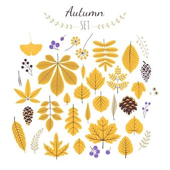 Otoño establece elementos. hojas de otoño y bayas.